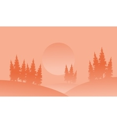 Silhouette of spruce in hill with fog vector