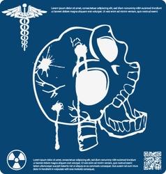Skull X ray 3 vector