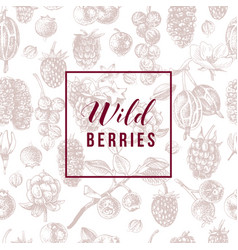 wild berries emblem over seamless pattern vector image
