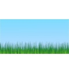 juicy green grass blue sky background vector image vector image