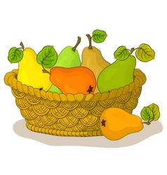 Basket with fruits pears vector image vector image