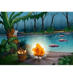 river and camp fire vector image