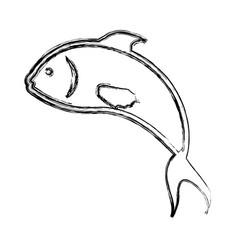 fish sea animal symbol vector image vector image