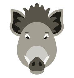 cartoon boar faceflat style vector image
