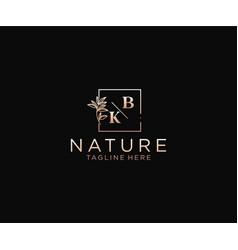 Initial bk letters beautiful floral feminine vector