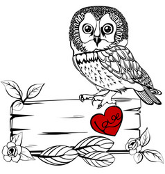 Owl with wooden sign vector