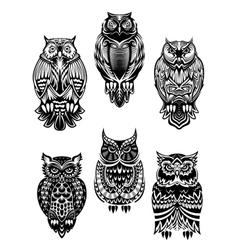 Tribal owl birds set vector image