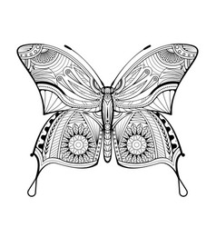butterfly coloring book style vector image