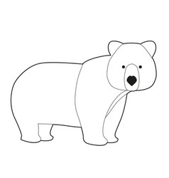 funny brown bear in cartoon style isolated vector image