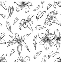Hand drawn lily seamless pattern vector