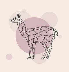 Lama side view geometric style wild animal vector