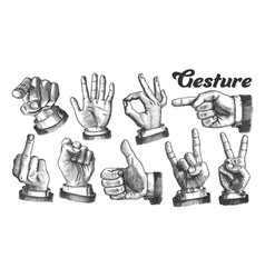 multiple male caucasian hand gesture set vector image
