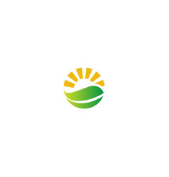 nature organic green leaf shine logo vector image