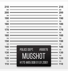 Police mug shot lineup background vector