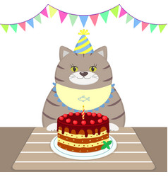 a gray fat cat in an apron and a cap sits at the vector image