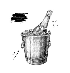 Champagne bottle in ice bucket Hand drawn vector image