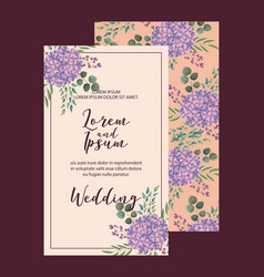 Elegant hydrangea flowers decoration floral vector