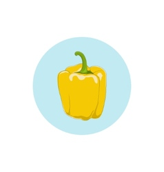 Icon yellow bell peppersweet pepper or capsicum vector image