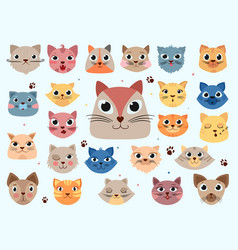 kitty head funny animals domestic colored cats vector image