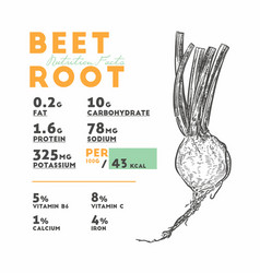 Nutrition facts beetroot hand draw sketch vector