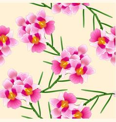pink vanda miss joaquim orchid singapore national vector image