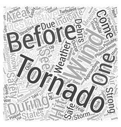 Tips for tornado emergency preparation Word Cloud vector