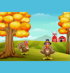 two funny turkeys in farm background vector image