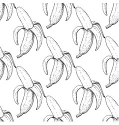 Banana seamless pattern isolated hand vector