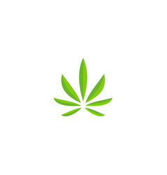 cannabis green leaf herb logo vector image