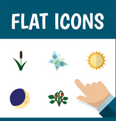 Flat icon bio set of cattail solar half moon and vector