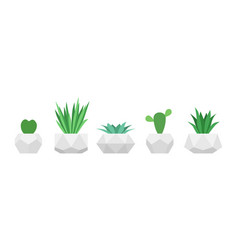flowers in trendy geometric pots set of vector image