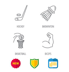 Ice hockey basketball and badminton icons vector