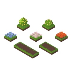 Isometric tree vector image