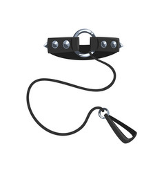 Leather fetish collar with steel spikes and leash vector