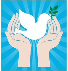 Peace dove symbol vector