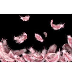 Pink feathers flying fluffy swan falling vector