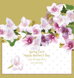 Spring delicate flowers bouquet card background vector