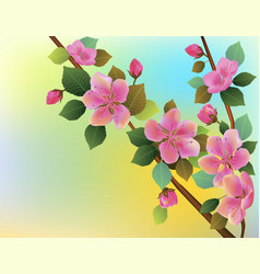 spring everything wakes up vector image