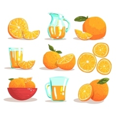 Oranges And Orange Juice Cool Style Bright vector image vector image