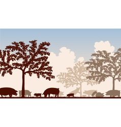 Orchard pigs vector image