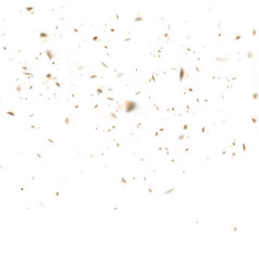 abstract golden confetti celebration isolated on vector image