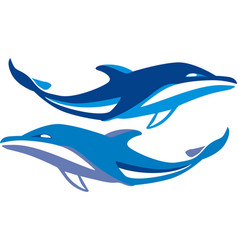 Dolphin swims vector