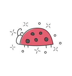 hand drawn ladybug isolated vector image