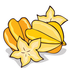 Isolate ripe starfruit or carambola vector