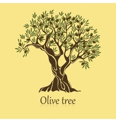 Olive tree with branches and berries logotype vector
