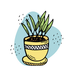 Doodle a potted plant interior decoration vector