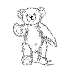 drawing teddy bear vector image