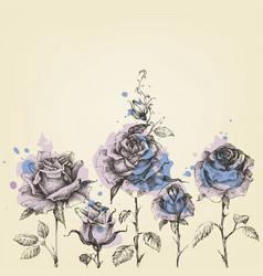 floral border made roses hand drawn vector image