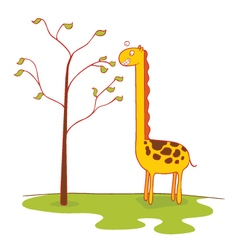 giraffe eats leaves vector image