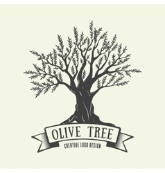 Hand-drawn graphic logo with olive tree vector